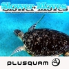 Couverture de l'album Slower Moves (Ambient Chillout Collection)