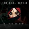 Couverture de l'album The Looking Glass