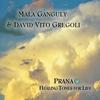 Cover of the album Prana: Healing Tones for Life