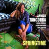 Cover of the album Springtime (feat. Mario Canonge, Thomas Bramerie & Tony Rabeson)