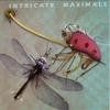 Cover of the album Intricate Maximals