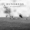 Couverture de l'album Wilderness (Deluxe Edition)