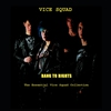 Couverture de l'album Bang To Rights: The Essential Vice Squad Collection