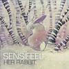 Cover of the album Her Rabbit - Single