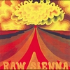 Cover of the album Raw Sienna