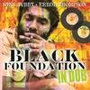 Couverture de l'album Black Foundation In Dub
