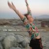Couverture de l'album Accidental Happiness