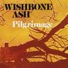 Couverture de l'album Pilgrimage