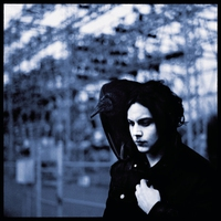 Cover of the track Blunderbuss