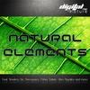 Couverture de l'album Natural Elements