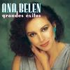 Couverture de l'album Ana Belén: Grandes Exitos