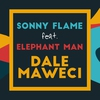 Cover of the track Dale Maweci (feat. Elephant Man)
