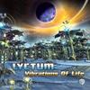 Couverture de l'album Vibrations of Life
