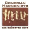 Couverture de l'album Die größten Hits! (Remastered)