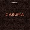 Cover of the album Caruma
