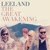 Couverture de l'album The Great Awakening