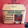 Couverture de l'album 30 Rare Black Doo-Wop Sounds Vol. 5
