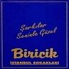 Couverture de l'album Şarkılar Seninle Güzel (İstanbul Sokakları)