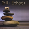 Cover of the album Still: Echoes - the Echoes Living Room Concerts Volume 15