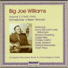 Couverture de l'album Big Joe Williams Vol. 1 1935 - 1941