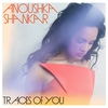 Cover of the album Traces of You