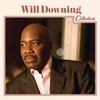 Couverture de l'album Will Downing Collection
