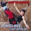 Cover of the album Zlatej Důl - Jsem Přece Já