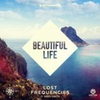 Cover of the track Beautiful Life