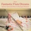 Couverture de l'album Fantastic Flute Dreams: Music for Relaxation