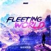 Couverture de l'album Fleeting World - Single
