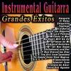 Cover of the album Instrumental Guitarra: Grandes Éxitos
