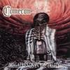 Couverture de l'album Megatrends in Brutality