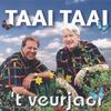 Cover of the album 't Veurjaor