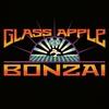 Couverture de l'album Glass Apple Bonzai