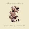 Cover of the album Undeniable / Irresistible
