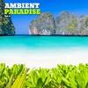Cover of the album Ambient Paradise, Vol. 2