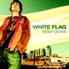 Cover of the album White Flag
