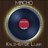 Cover of the album Kalimba de Luna (Disco Mix - Original 12 Inch Version) - Single