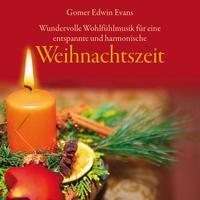 Cover of the track Weihnachtszeit: Entspannende und Harmonische Wohlfühlmusik