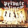 Couverture de l'album Evel Knievel Factor
