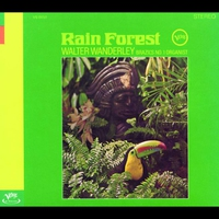 Cover of the track Rain Forest