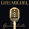Cover of the album Luis Miguel: Grandes Éxitos