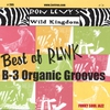 Cover of the album Best of Rlwk - B-3 Organic Grooves
