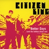 Cover of the track Better Days (And The Bottom Drops Out)