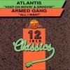 Couverture de l'album 12 Inch Classics