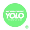 Couverture de l'album Yolo - Single