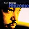 Couverture de l'album Rhizome