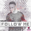 Couverture de l'album Follow Me - Single