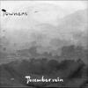 Couverture de l'album December Rain - Single