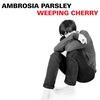 Couverture de l'album Weeping Cherry